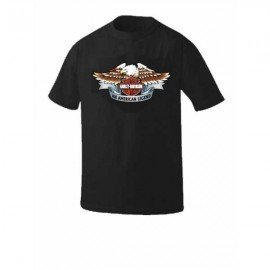 CAMISETA LOGO HARLEY COLOR